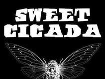 SWEET CICADA