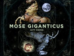 Image for Mose Giganticus
