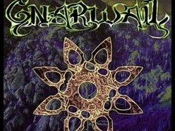 Image for gnarwail