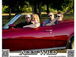 Image for Aces Wild (Roseburg)