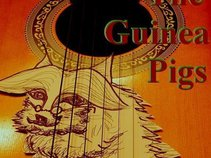 Guinea Pigs (2010/04/28 new song out!)