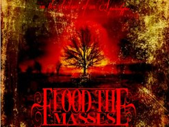 Image for Flood The Masses