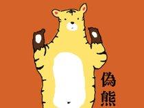 很Soft的偽熊