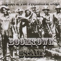 1356469820 boomtown stain cover