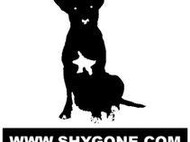Shygone