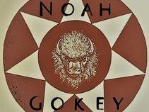 Noah Gokey