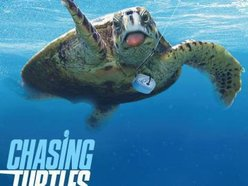 Image for Chasing Turtles