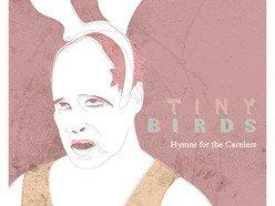 Image for Tiny Birds