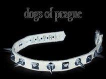 Dogs of Prague