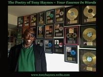 Tony Haynes
