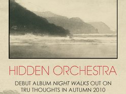 Image for Hidden Orchestra