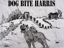Dog Bite Harris