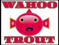 Wahoo Trout