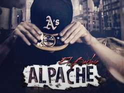 Image for ALPACHE