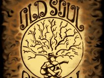 Old Soul Revival