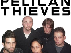 Image for Pelican Thieves