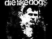 Good men die like dogs.