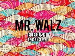 Mr Walz
