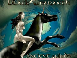 Black-Amaranth