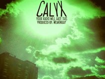 Calyx 3013
