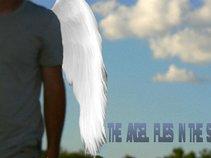 THE ANGEL FLIES IN THE SKY (Cédric Doom)