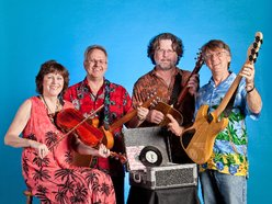 Image for AUSTIN LOUNGE LIZARDS
