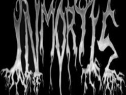 Image for INMORTIS