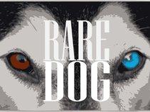 Rare Dog