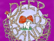 The Deep Woods Band