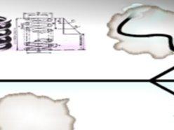 Image for spadix