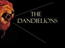 The Dandielions