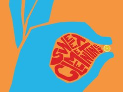 Image for The Sweet Clementines