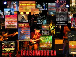 Image for Brushwood