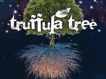 Truffula Tree