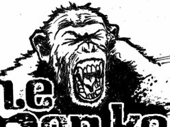 Image for Tone Monkeys