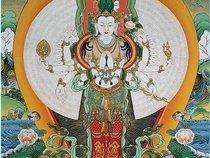 Buddah's Priest