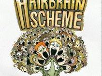 The Hairbrain Scheme