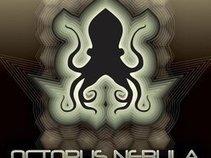 Octopus Nebula