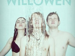 Image for WILLOWEN