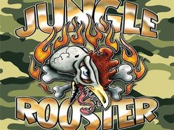Jungle Rooster
