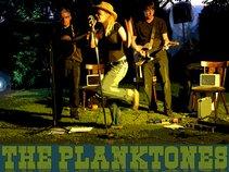 The Planktones