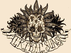 Image for Tribal Suns