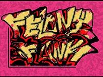 felony funk