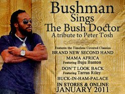 Image for Bushman