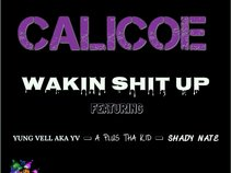 calicoe tha 100 round shooter
