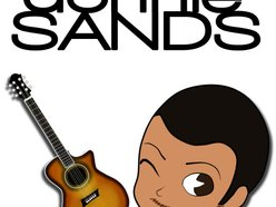 Image for Donnie Sands (Seeking Label)