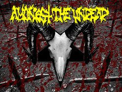 Image for Amongst The Undead