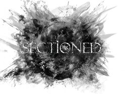 Image for Sectioned