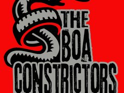 Image for The Boa Constrictors