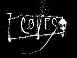 7Coves